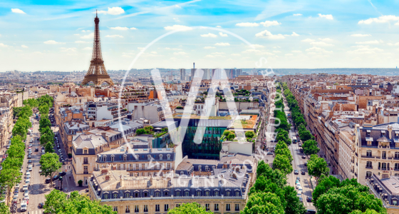 A Paris de Picasso   Viagem de Autor com Vasco Medeiros   Pinto Lopes Viagens