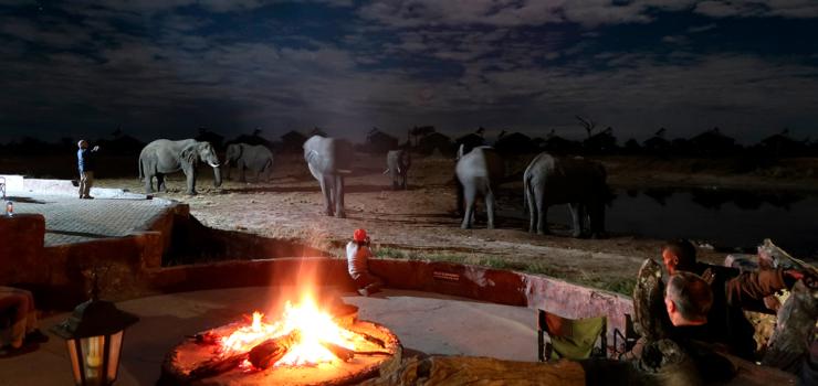 No Kalahari! Botsuana, Zimbabué, Zâmbia   Gonçalo Cadilhe