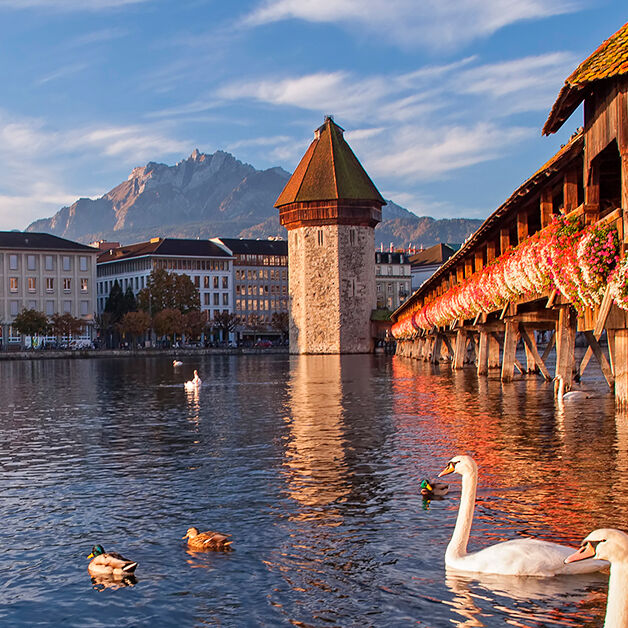 O melhor da Suíça e Tirol   Pinto Lopes Viagens