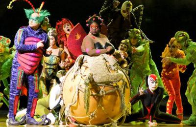OVO – Cirque du Soleil | Pinto Lopes Viagens
